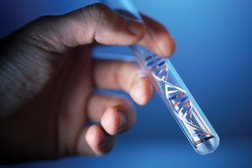 Na czym polega fenomen medycyny komórkowej?
